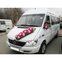 Rent a minivan for wedding